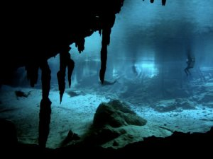 Snorkeling in the cenotes
